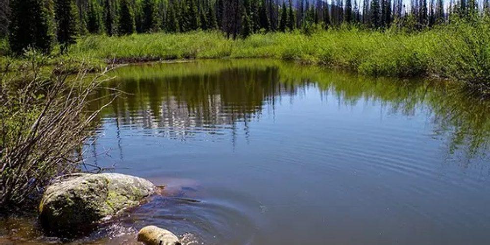 Divide Lakes Trail