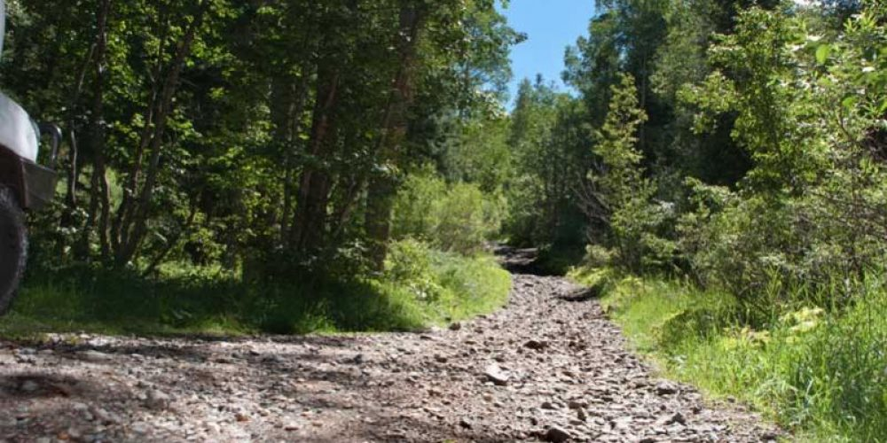 Elwood Pass OHV Trail
