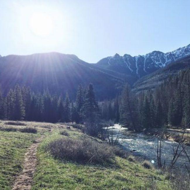 Lower Weminuche Trail
