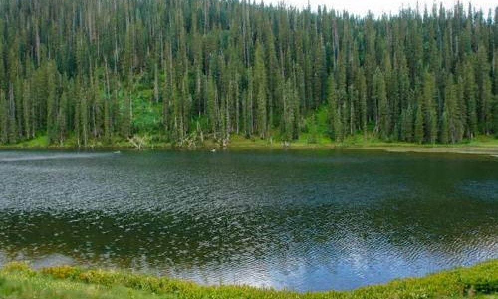 Alberta Park Reservoir