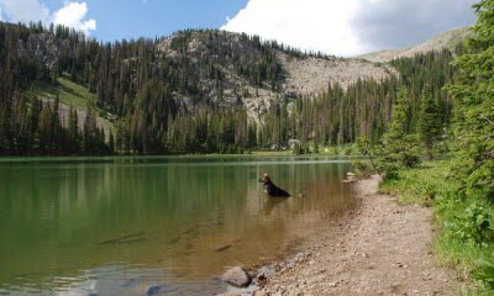 Fourmile Lakes Trail