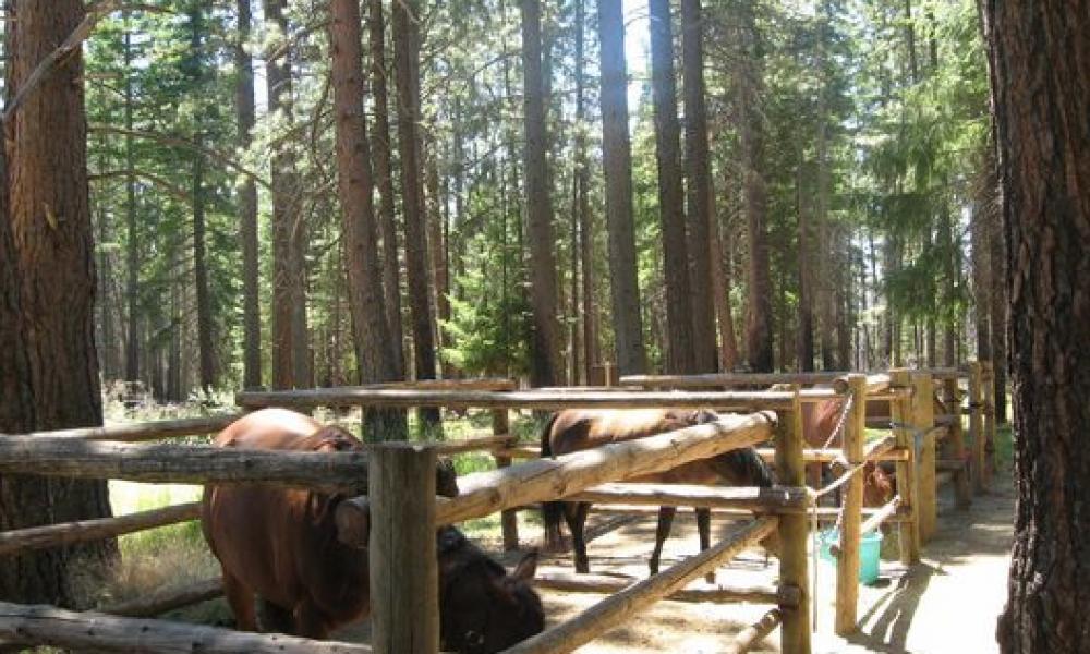 Palisades Horse Campground